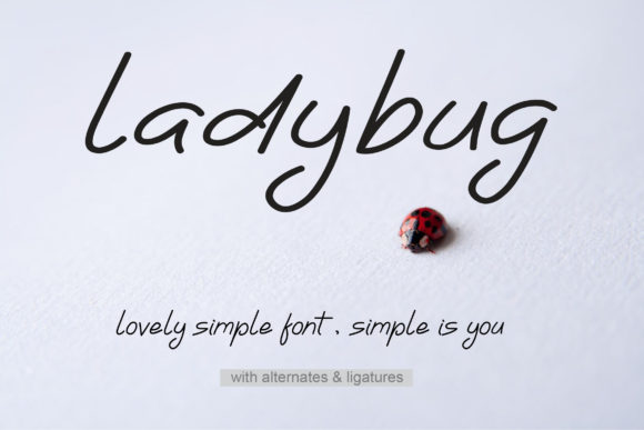 Print on Demand: Ladybug Sans Serif Font By aminmario