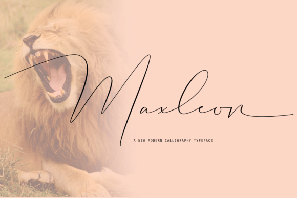Print on Demand: Maxleon Script & Handwritten Font By Danti