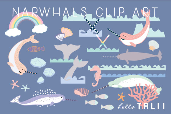 Narwhal Clip Art Graphic Illustrations By Hello Talii