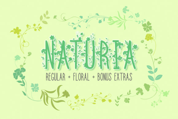 Print on Demand: Naturia Decorative Font By Anastasia Feya
