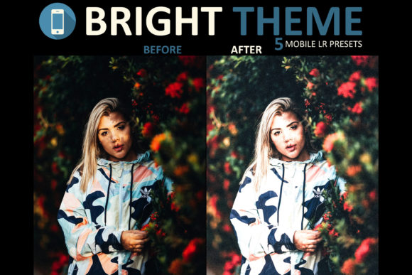 lightroom mobile app how to add presets