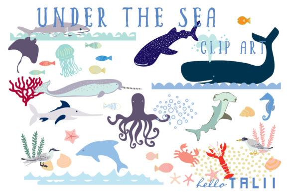 Ocean Creatures Clip Art Graphic Illustrations By Hello Talii