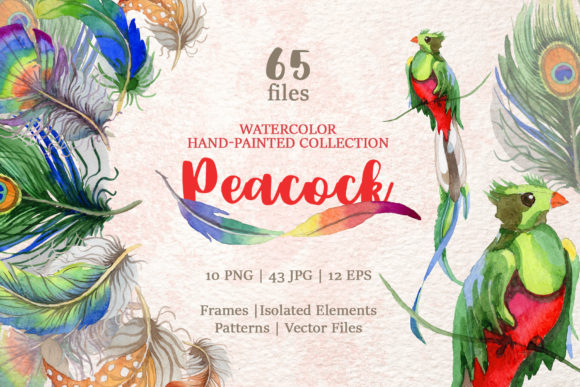 Print on Demand: Peacock Watercolor Gráfico Ilustraciones Por MyStocks