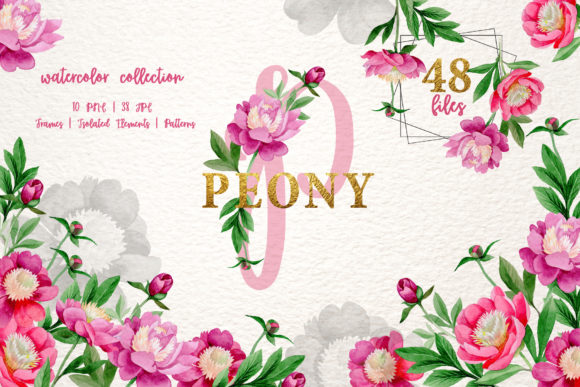 Print on Demand: Pink Peony Graphic Illustrations By MyStocks