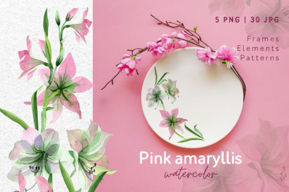 Print on Demand: Pink Amaryllis Watercolor Png Graphic Illustrations By MyStocks