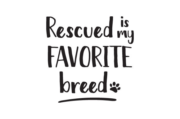 Rescued is My Favorite Breed Animals Craft Cut File By Creative Fabrica Crafts