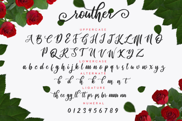 Routher Script Font By MLKWSN studio Image 2