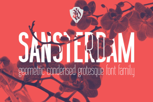 Print on Demand: Sansterdam Sans Serif Font By NREY - Image 1