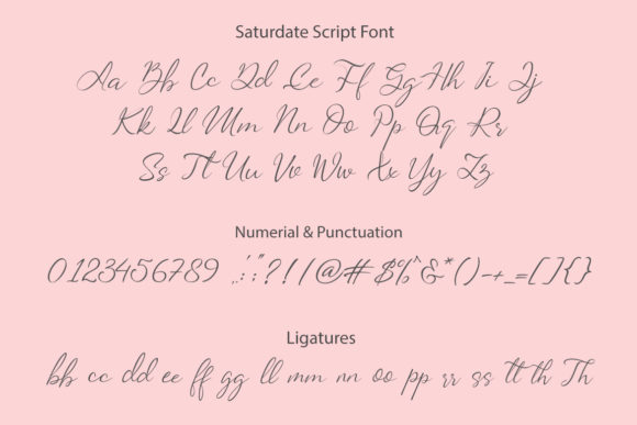 Print on Demand: Saturdate Duo Serif Font By Subectype - Image 11