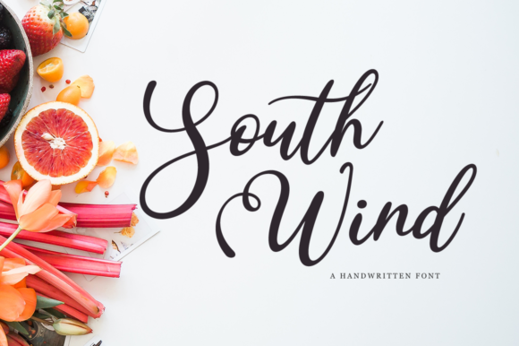 Print on Demand: South Wind Script & Handwritten Font By Pasha Larin