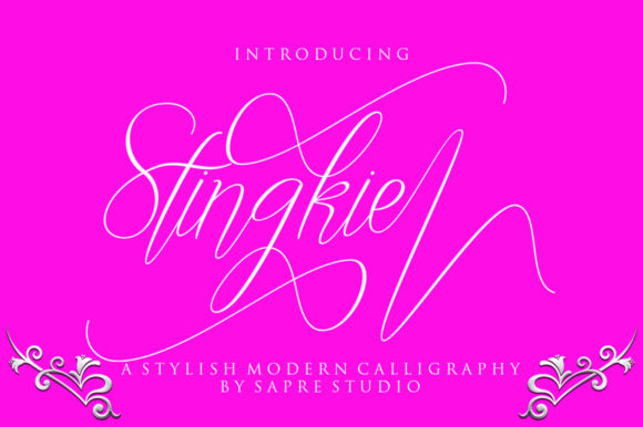 Print on Demand: Stingkie Script & Handwritten Font By sapre.studio - Image 1