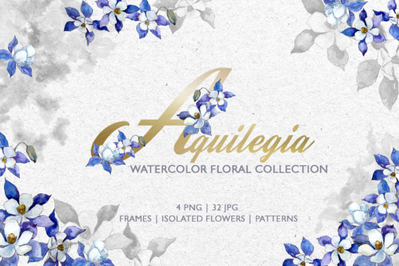 Print on Demand: Watercolor Blue Aquilegia Png Graphic Illustrations By MyStocks