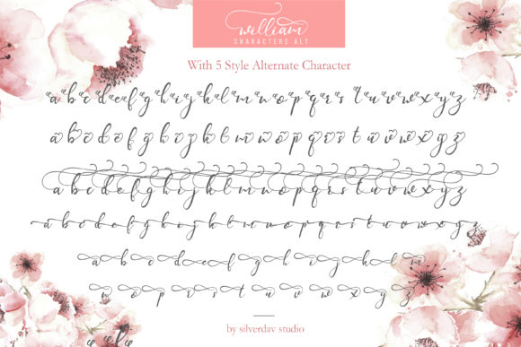 Print on Demand: William Script & Handwritten Font By silverdav - Image 11