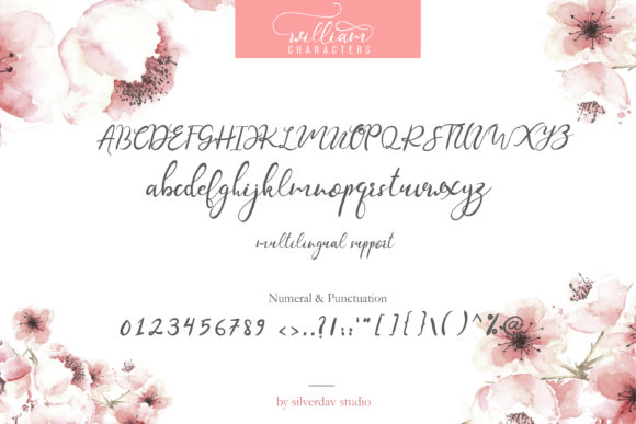Print on Demand: William Script & Handwritten Font By silverdav - Image 12