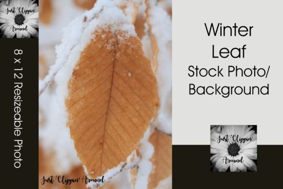 Winter Leaf Graphic Nature By justclippinaround