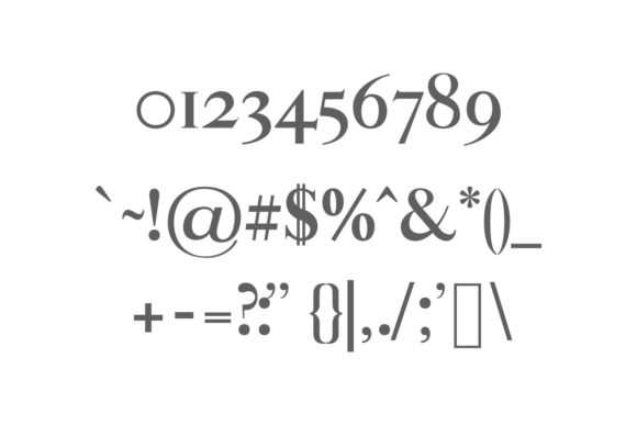 Print on Demand: Aable Family Serif Font By Creative Tacos - Image 3
