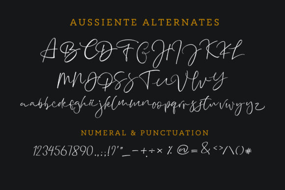 Aussiente Font By InspiraType Image 9