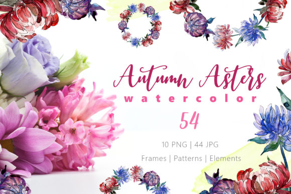 Print on Demand: Autumn Asters Watercolor Png Graphic Illustrations By MyStocks