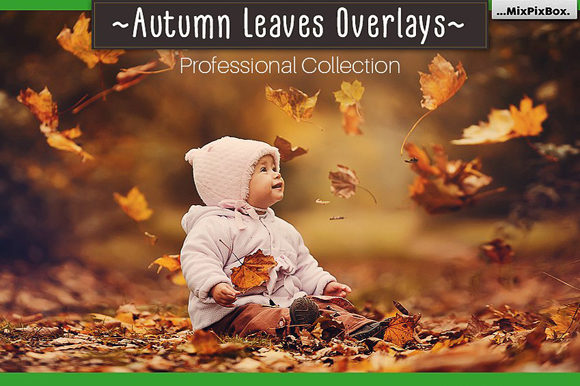 Download Free Autumn Leaves Overlays Graphic By Mixpixbox Creative Fabrica for Cricut Explore, Silhouette and other cutting machines.