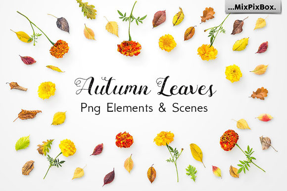 Print on Demand: Autumn Leaves - Png Elements and Scenes Graphic Layer Styles By MixPixBox