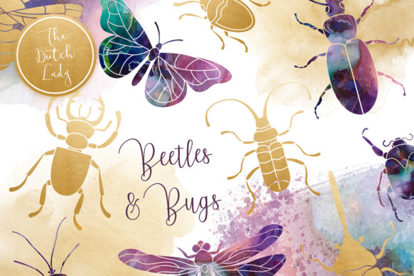 Beetles Bugs Clipart Set Graphic By Daphnepopuliers Creative Fabrica