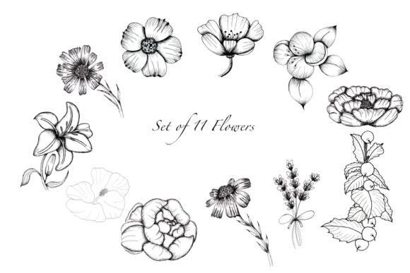 Print on Demand: Black and White Botanical Collection Graphic Illustrations By tanatadesign - Image 2
