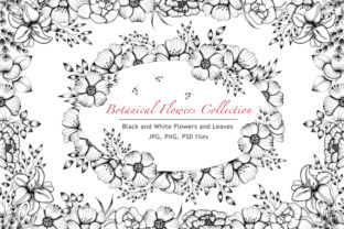 Print on Demand: Black and White Botanical Collection Graphic Illustrations By tanatadesign