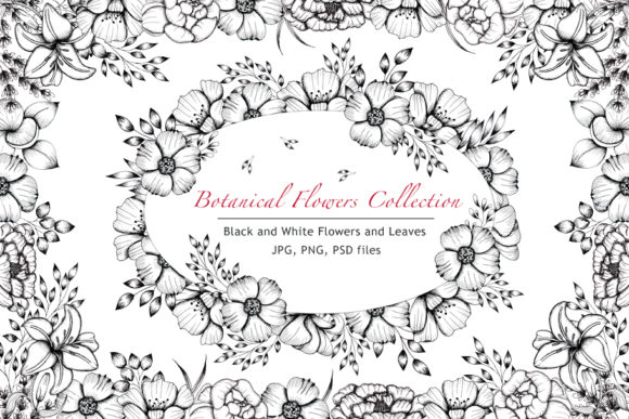 Print on Demand: Black and White Botanical Collection Grafik Illustrationen von tanatadesign