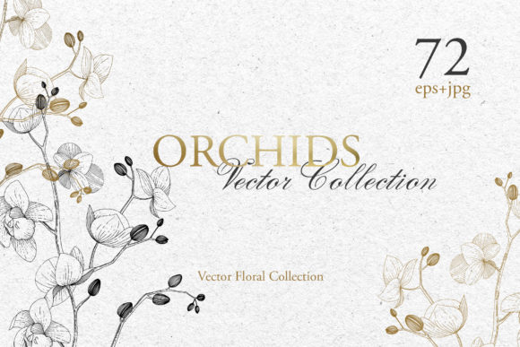 Print on Demand: Branch of Orchids Vector Watercolor Graphic Illustrations By MyStocks
