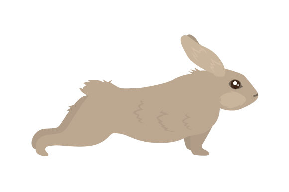 Bunny Doing Yoga Svg Cut File By Creative Fabrica Crafts