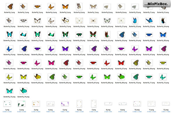 Print on Demand: Butterflies Photo Overlays Graphic Layer Styles By MixPixBox - Image 5
