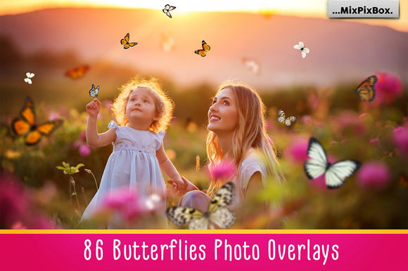 Print on Demand: Butterflies Photo Overlays Graphic Layer Styles By MixPixBox