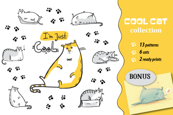Cool Cat Collection