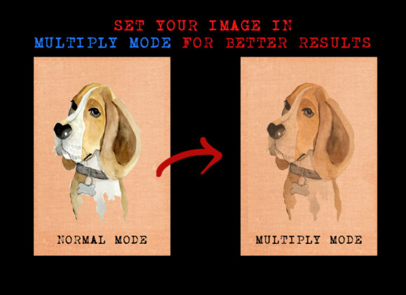 Cute Dog Graphic Illustrations By Ambar Art - Image 3