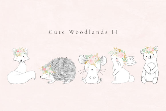 Cute Woodlands II Graphic Illustrations By Sunny Blossom Designs