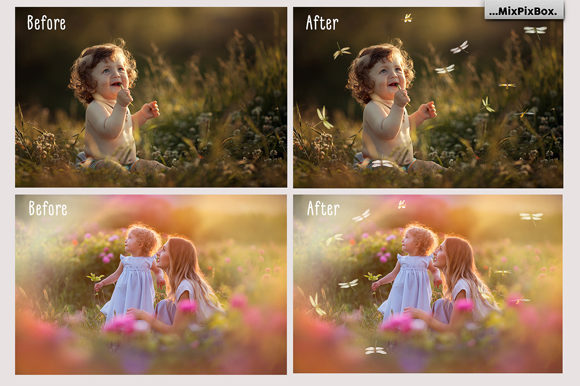 Print on Demand: Dragonfly Photo Overlays Graphic Layer Styles By MixPixBox - Image 2