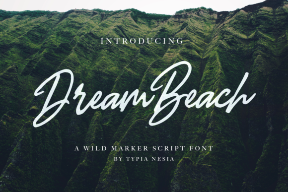Print on Demand: Dream Beach Script & Handwritten Font By Typia Nesia