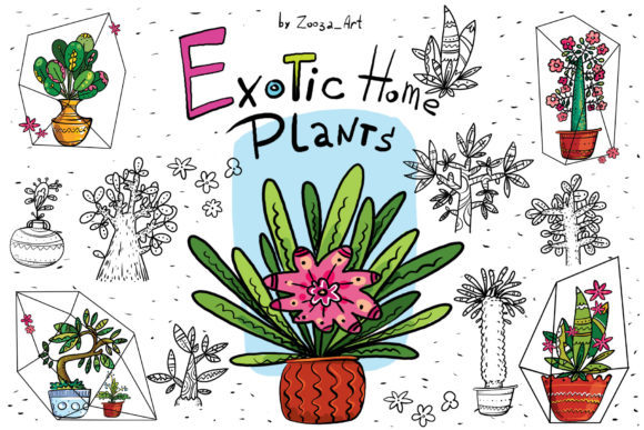 Print on Demand: Exotic Home Plants Graphic Illustrations By Zooza Art