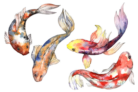 Print on Demand: Fairy Goldfish Watercolor   Graphic Illustrations By MyStocks