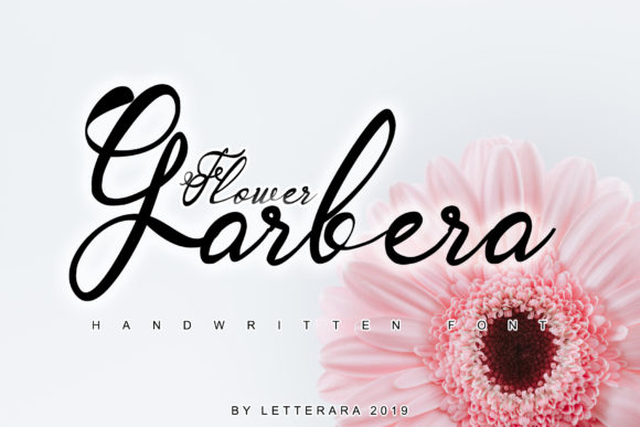 Print on Demand: Garbera Family Script & Handwritten Font By thomasaradea