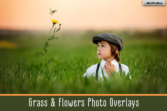 Print on Demand: Grass and Flowers Photo Overlays Graphic Layer Styles By MixPixBox