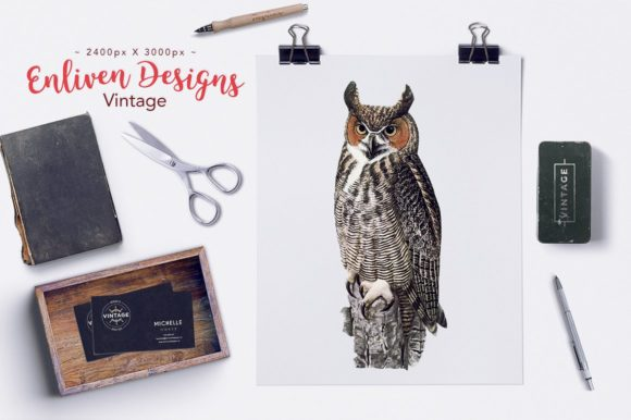Download Free Great Horned Owl Graphic By Enliven Designs Creative Fabrica for Cricut Explore, Silhouette and other cutting machines.