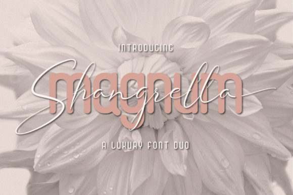 Print on Demand: Magnum Shangrella Duo Script & Handwritten Font By Fivont