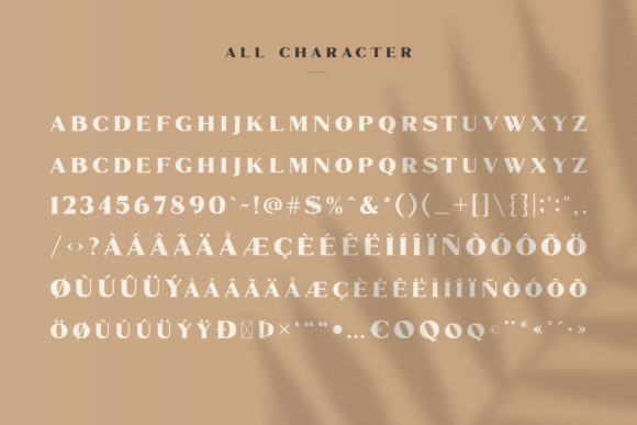 Print on Demand: Marques Family Serif Font By craftsupplyco - Image 8