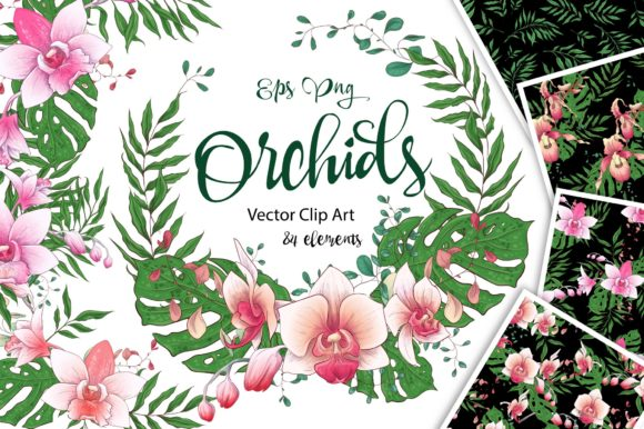 Print on Demand: Orchids Floral Arrangements Vector Set Graphic Illustrations By nicjulia - Image 1