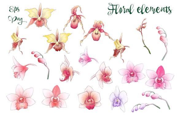 Print on Demand: Orchids Floral Arrangements Vector Set Graphic Illustrations By nicjulia - Image 7