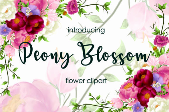 Peony Blossom Clipart Graphic By geadesign