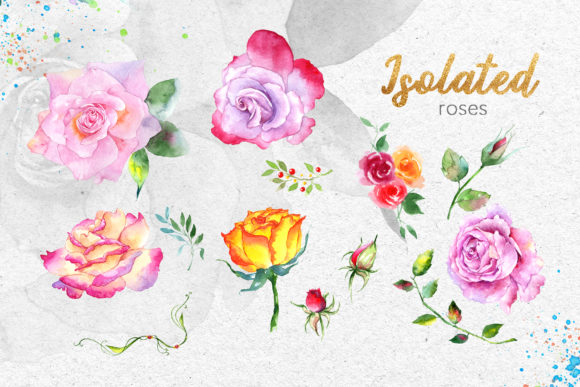 Pink Roses Watercolor Collection Graphic By MyStocks Image 8