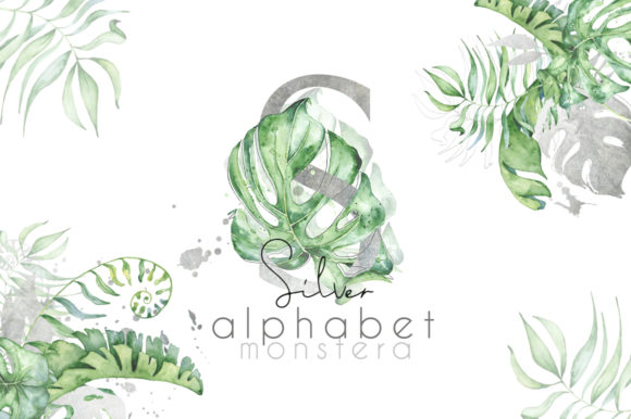 Silver Monstera - Tropical Leaves Alphabet Graphic Illustrations By EvgeniiasArt