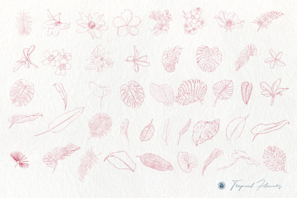 Tropical Flowers Graphic Illustrations By webvilla - Image 6